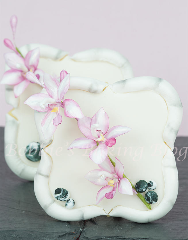 Bamboo Cookie Frame with Spathoglottis Orchids and Rocks
