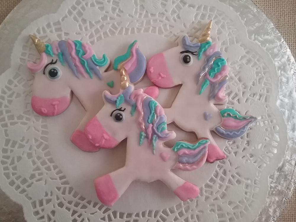 Magical Unicorns by Tarryn Meiring
