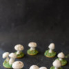 Meringue Mushroom Sugar Cookie Fairy Ring