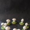 Meringue Mushroom Sugar Cookie Fairy Ring