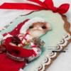 Santa Helper - side