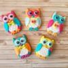 Cute owls!💕
