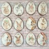 Watercolour Easter bunny cookies