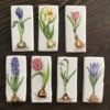Handpainted Bulb Flower Collection