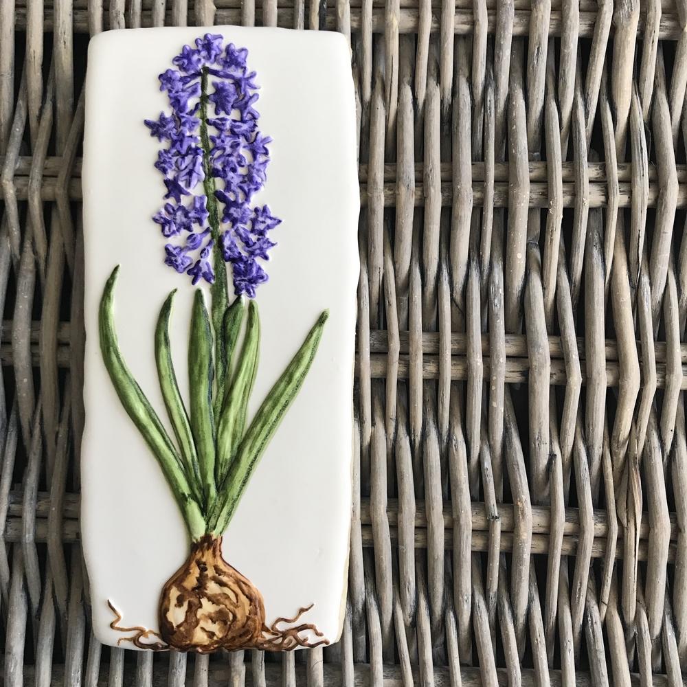 Handpainted Cookie, Bulb Flower: Hyacinth Orientalis
