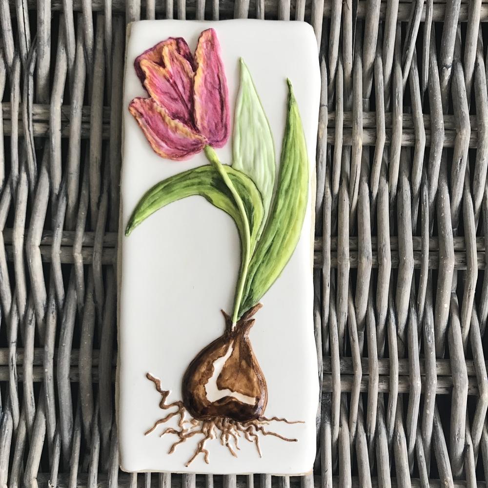 Handpainted Cookie, Bulb Flower: Tulip