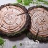 Gingerbread as wood
