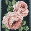 Rose Garden | Sweet Prodigy