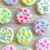 Fruit Pattern Cookies