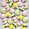Isabela's Birthday Cookies