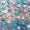 Starfish and Shell background