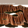 The Heart of the Forest - decor: tree bark