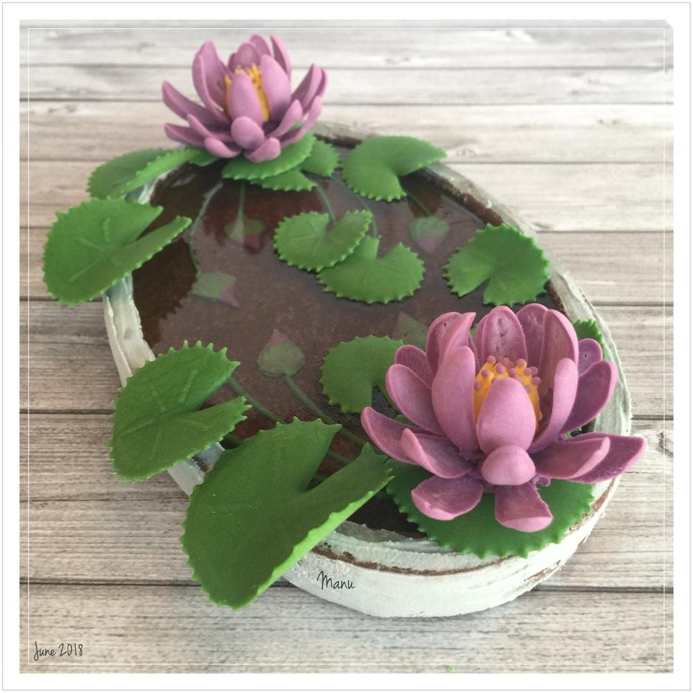 Water Lily Pond | Manu