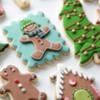 Sweetopia Christmas Decorated Cookies