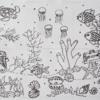 Aquarium Puzzle sketch