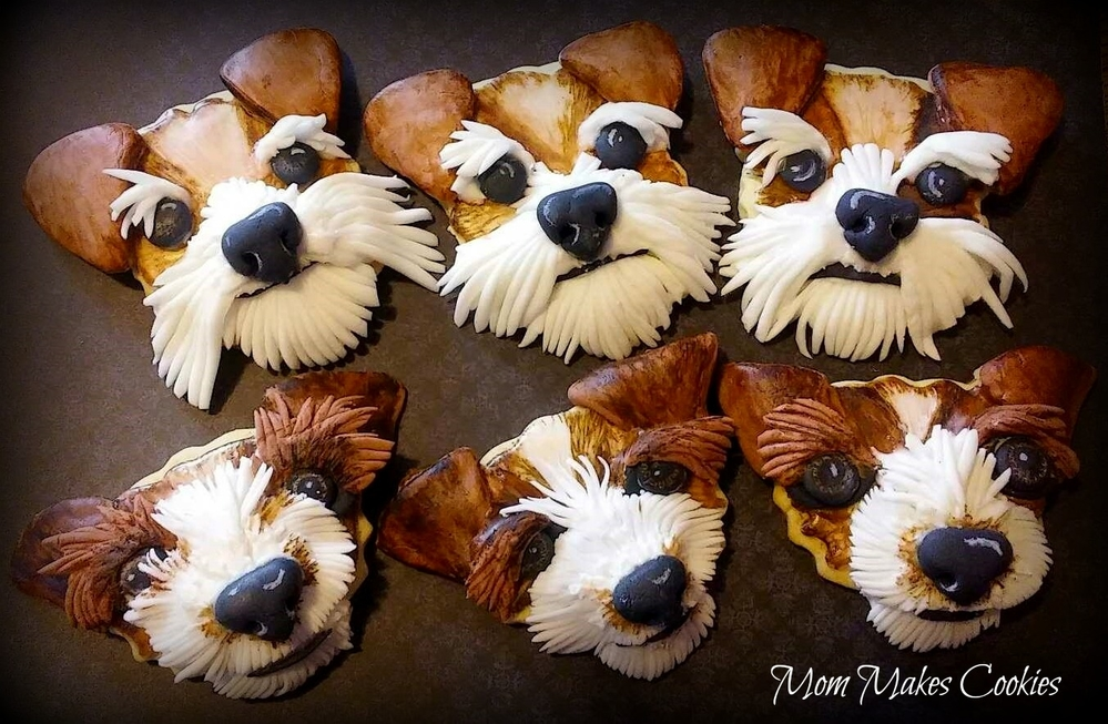 More Pups!