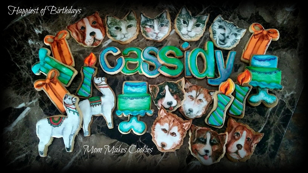 Puppies, Llamas, and Kitties for Cassidy