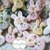 Bunnies 🐇
