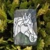 Horse in Grass
