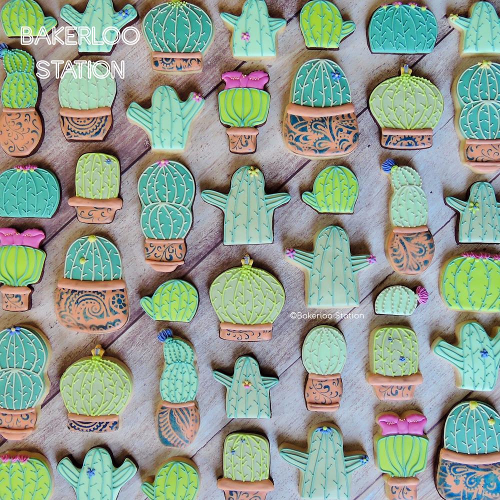 Cacti | Bakerloo Station