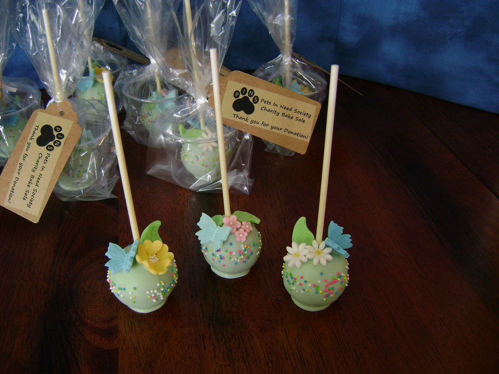 PINS Pops - 'Pets In Need Society' charity bake sale