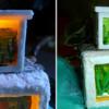 Two Aquariums with Goldfish (1x mini and 1x medium)