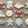 Beach Trip Cookies