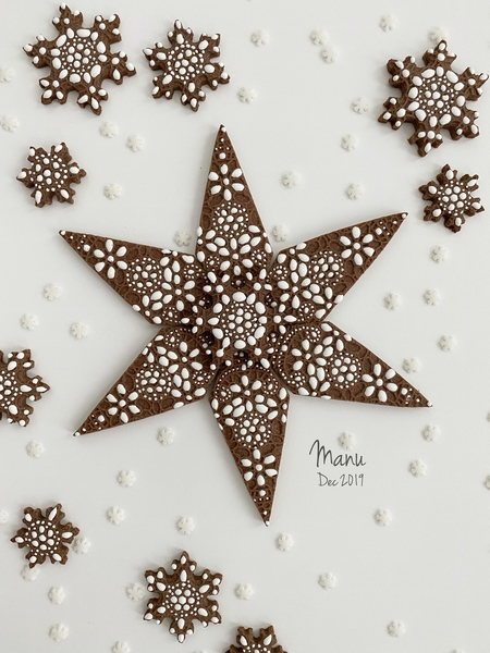 Embossed and Decorated Snowflake Cookie