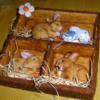 A rabbit hutch 2: icingsugarkeks