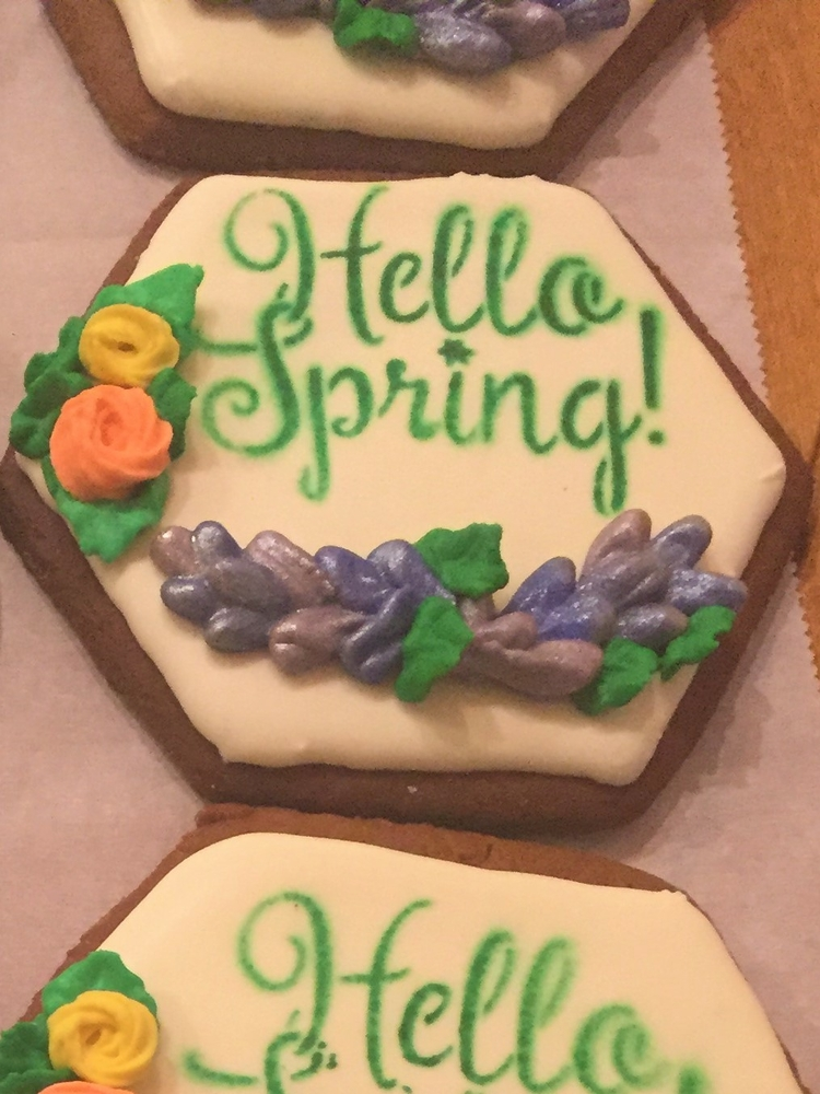 Spring Close-up