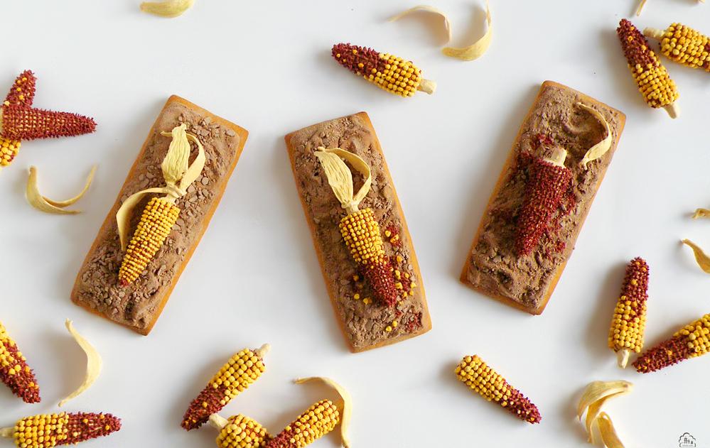 Dried Corn Cob (Background)