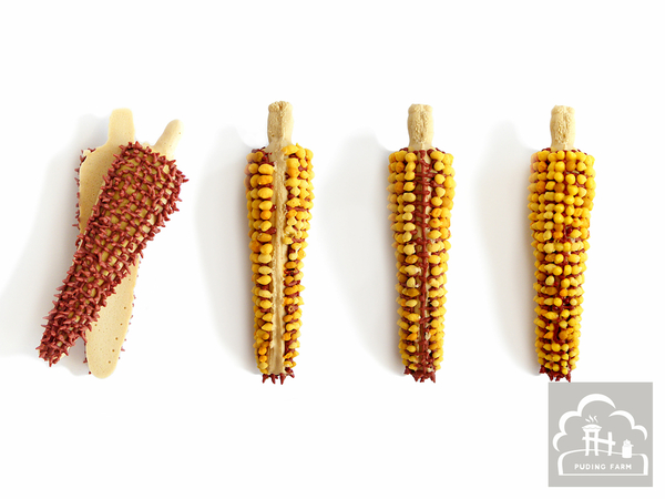 pf__2020__dried_corn_cob_TUTORIAL_02