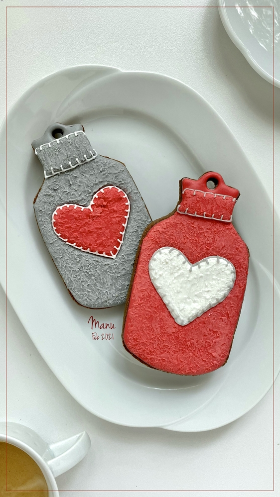 "Hot Water Bottles with ""Felt"" Covers 